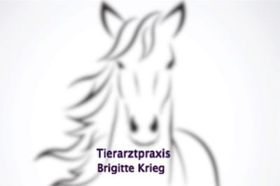 Tierarzpraxis Brigitte Krieg